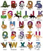 vector alphabet with animals