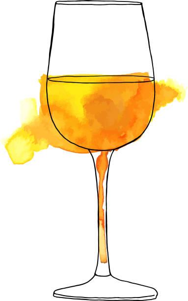 bildbanksillustrationer, clip art samt tecknat material och ikoner med vektor- och akvarell ritning av glas vitt vin - vitt vin glas