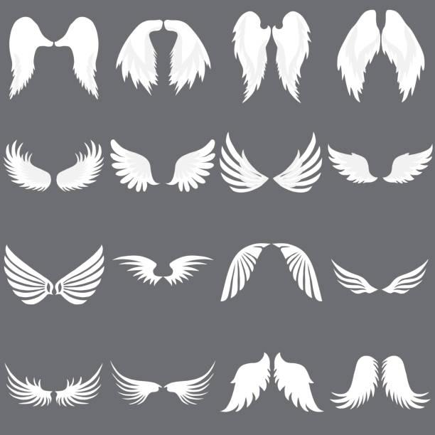 illustrations, cliparts, dessins animés et icônes de vector angel wing logo ensemble. société de logo ailé. ensemble d'aile d'ange mignon. vol d'aile. - aile d'animal