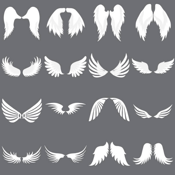 vector angel wing logo set. geflügelte logo-firma. set of cute angel wing. flügel fliegen. - tierflügel stock-grafiken, -clipart, -cartoons und -symbole