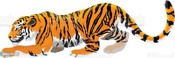 Vector angry tiger mascot illustration vector id694416122?b=1&k=6&m=694416122&s=612x612&h=6yssqtwfyxlnrkwbdhp3wuonri8ht76fy5di088ij70=