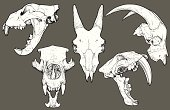 Isolated black and white vector animal skull collection: Mammal Collection 1. Top row: Lion profile, Goat (front view), Goat (profile view). Bottom row: Polar Bear and Saber Tooth Tiger. Each skull has been grouped.