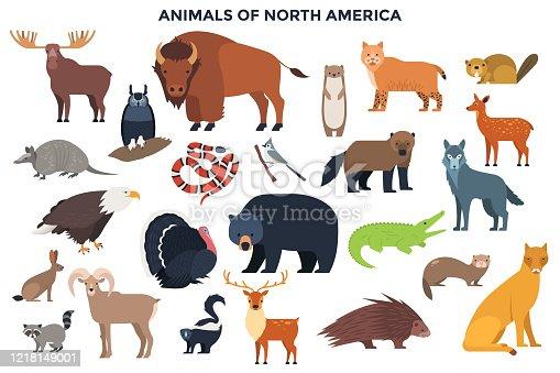 Vector Animals of North America