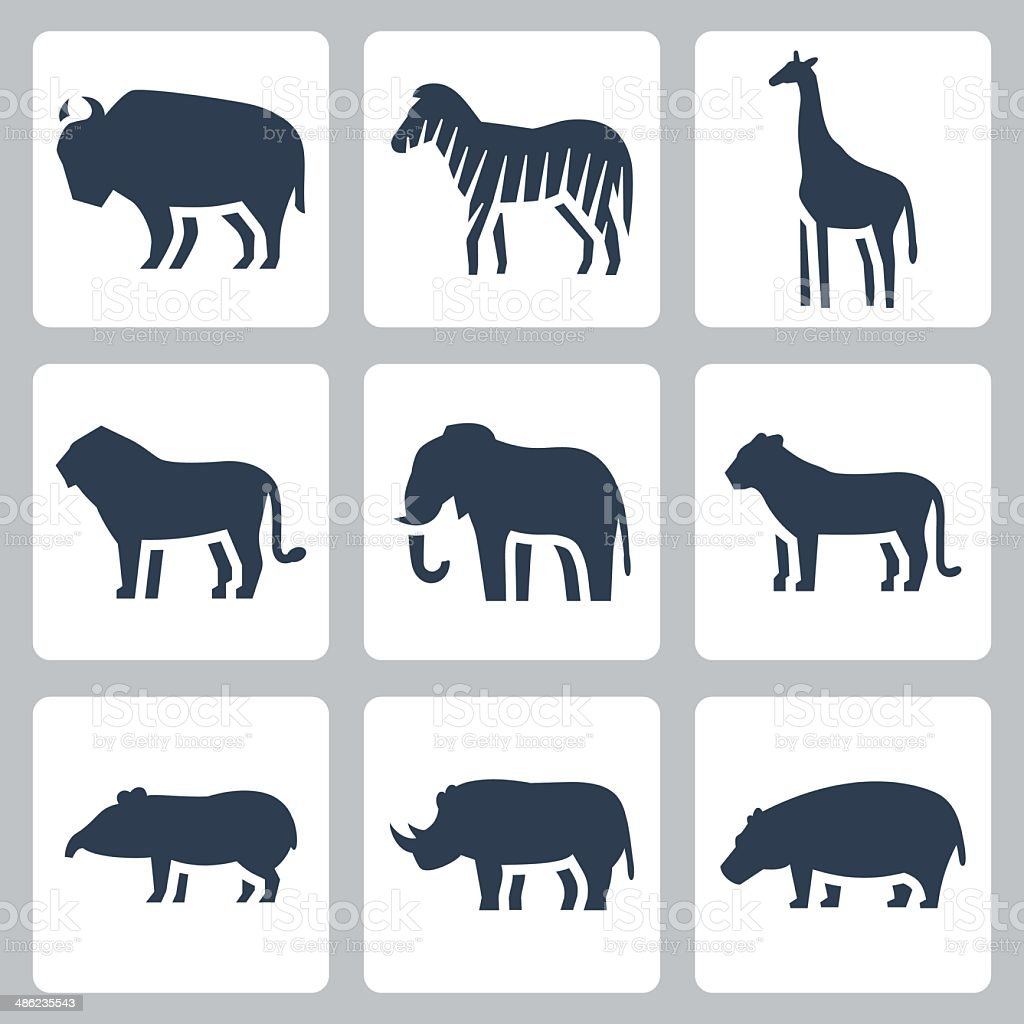 Vector animals of tropical zone icons set vector art illustration