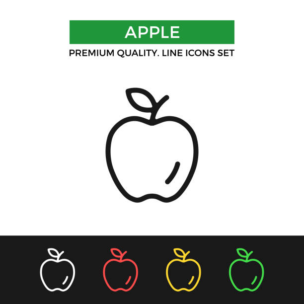 Vector apple icon. Premium quality graphic design. Modern linear stroke signs, pictograms, outline symbols collection, simple thin line icons set for websites, web design, mobile app vector art illustration
