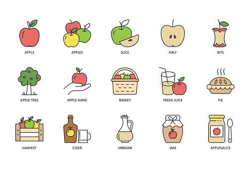 Vector apple icons. Multi color set with Editable stroke. Red yellow green apples cider basket bottle, pie slice vinegar fresh juice. Jam half apple tree harvest applesauce bite.