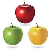 istock Vector Apples 513557416