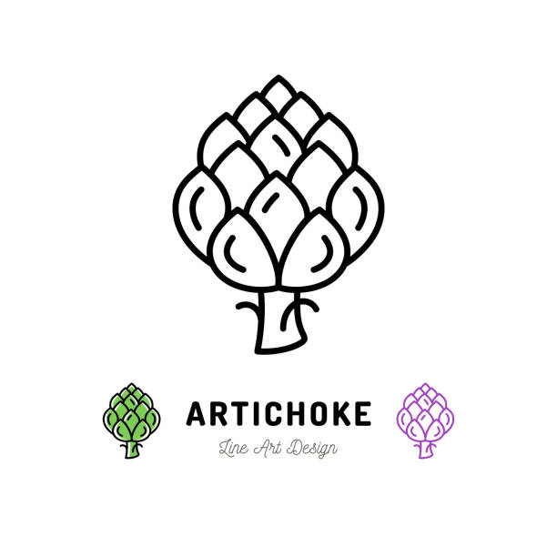 Vector Artichoke icon Vegetables logo. Thin line art design Vector Artichoke icon Vegetables logo. Thin line art design, outline illustration artichoke stock illustrations