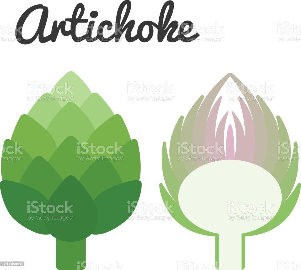 Vector artichoke vector art illustration