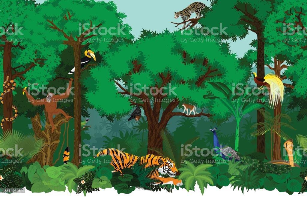 ベクトル動物とシームレスなアジアの熱帯雨林ジャングルの背景パターン イラスト ベクターアートイラスト