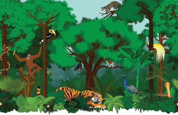 vektor-asiatische nahtlose tropischen regenwald dschungel hintergrund muster illustration mit tieren - megabat stock-grafiken, -clipart, -cartoons und -symbole