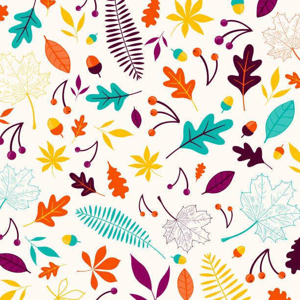 Vector Autumn Design with Autumnal Leaves vector art illustration