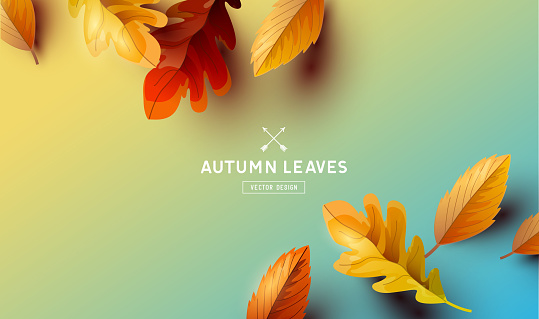 Vector Autumn Falling Leaves Background