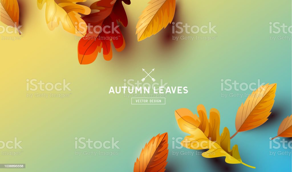 Vector Autumn Falling Leaves Background - illustrazione arte vettoriale