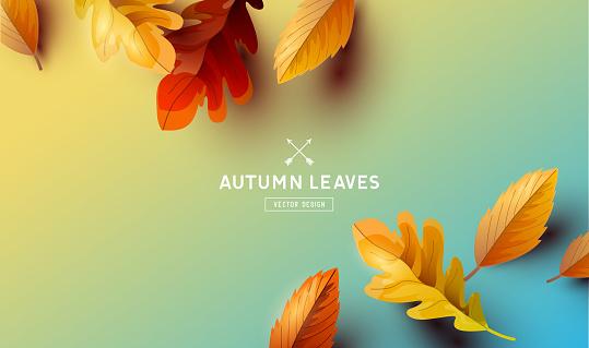 Autumn stock illustrations