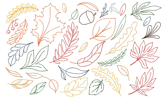 vector autumn illustration of multi-colored doodle leaves on a white background,