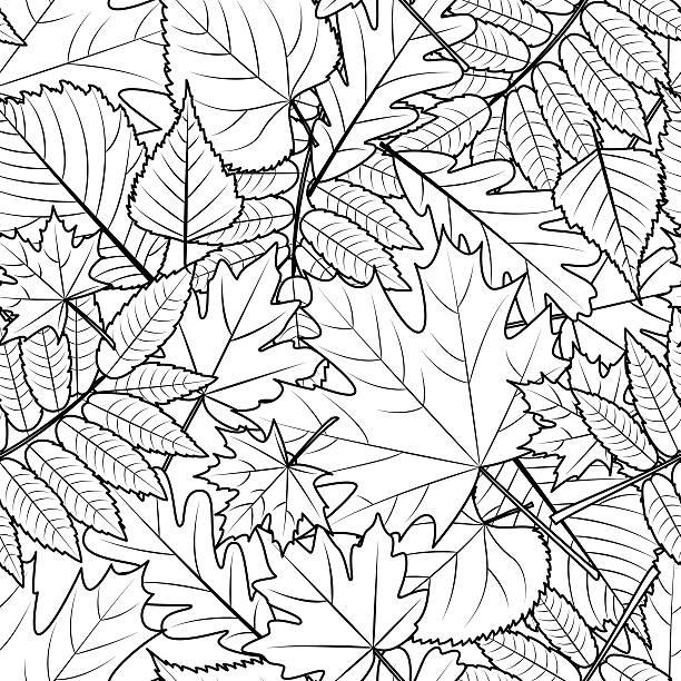 Royalty Free Coloring Book Autumn Tree Clip Art, Vector ...