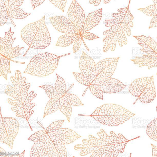 Vector autumn seamless pattern with oak poplar beech maple aspen and vector id1026559600?b=1&k=6&m=1026559600&s=612x612&h=c0cjlkzehwvyitkiefey41pyr9txxa vxwm8ezudorq=