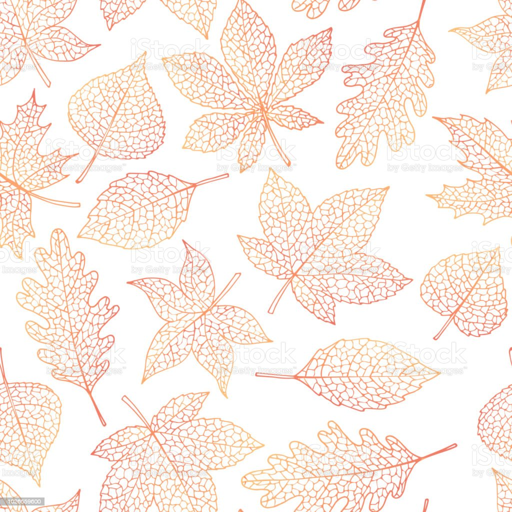 Vector autumn seamless pattern with oak, poplar, beech, maple, aspen and horse chestnut leaves outline on the white background. Fall line art of foliage. vector art illustration