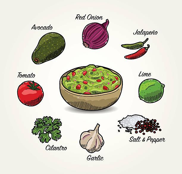 illustrazioni stock, clip art, cartoni animati e icone di tendenza di vettoriale ingredienti di avocado guacamole - aglio cipolla isolated