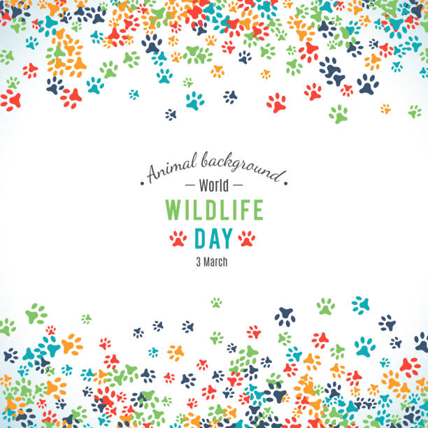 Vector background of world wildlife day Vector illustration of world wildlife day. Animal background. 3 March, the day of the adoption of the Convention on International Trade in Endangered Species of Wild Fauna and Flora. Vector animals background stock illustrations
