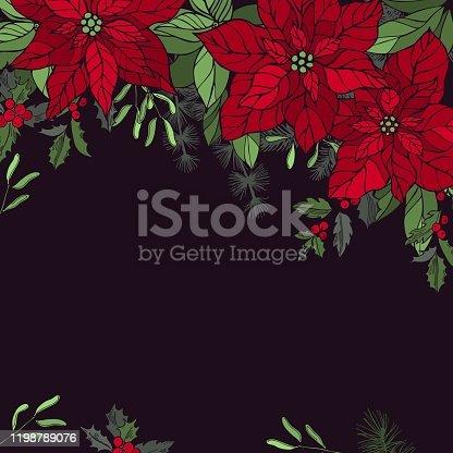 istock Vector background with  amaryllis and Christmas plants. 1198789076