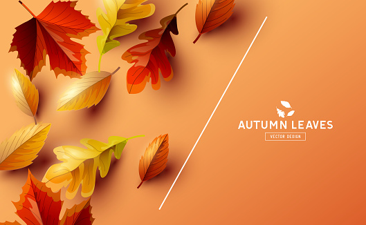 Vector Background With Autumn Falling Leaves
