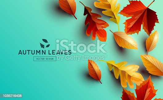 Autumn seasonal background design with falling autumn leaves and room for text. Vector illustration