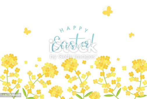 istock vector background with canola flower for banners, cards, flyers, social media wallpapers, etc. 1303846403