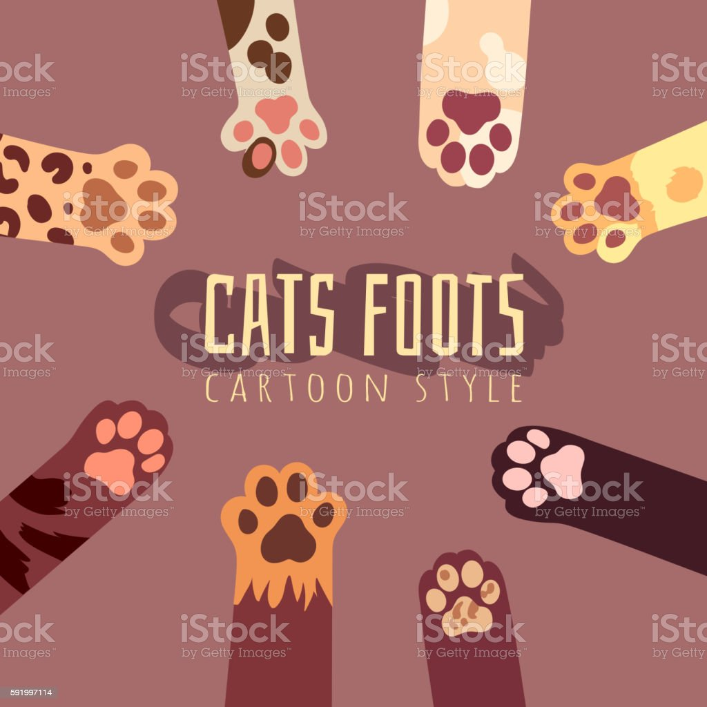 Vector background with cats foots in cartoon style. T-shirt design vector art illustration