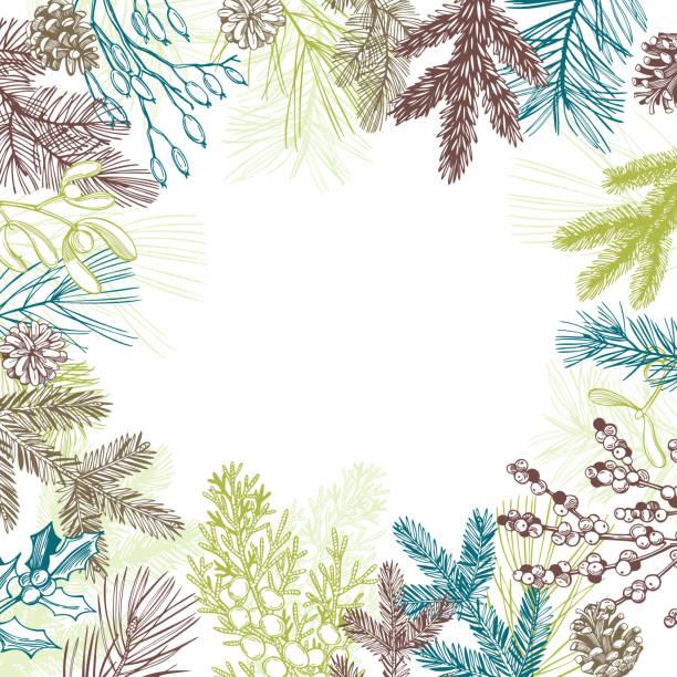 stockillustraties, clipart, cartoons en iconen met vectorachtergrond met de installaties van kerstmis. - pinaceae