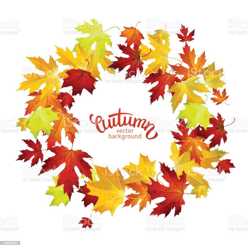 vector background with colorful autumn leaves banner card template