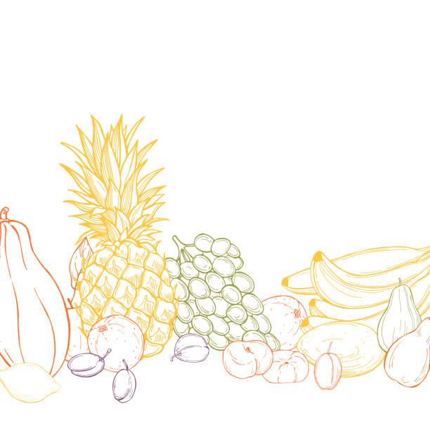ilustraciones, imágenes clip art, dibujos animados e iconos de stock de fondo vectorial con frutas. - conceptos y temas