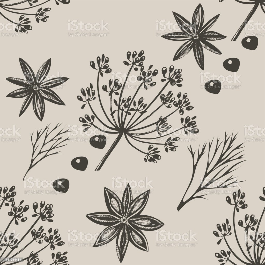 Vector background with hand drawn herbs and spices. Hand drawn ink illustration. Organic and fresh spices illustration Vector background with hand drawn herbs and spices. Hand drawn ink illustration. Organic and fresh spices illustration Backgrounds stock vector