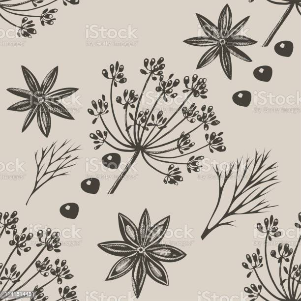 Vector Background With Hand Drawn Herbs And Spices Hand Drawn Ink Illustration Organic And Fresh Spices Illustration Stock Illustration - Download Image Now
