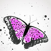 Vector background with leopard  butterfly