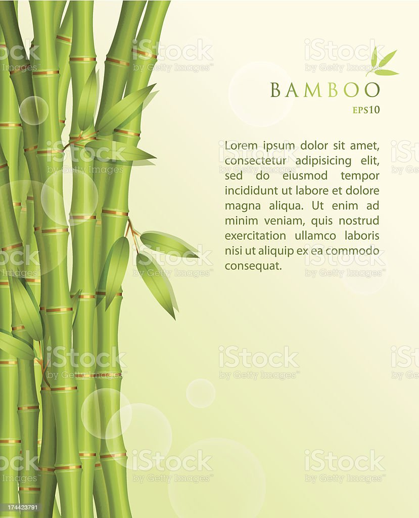 EPS10 vector background with shoots of green bamboo royalty-free stock vector art