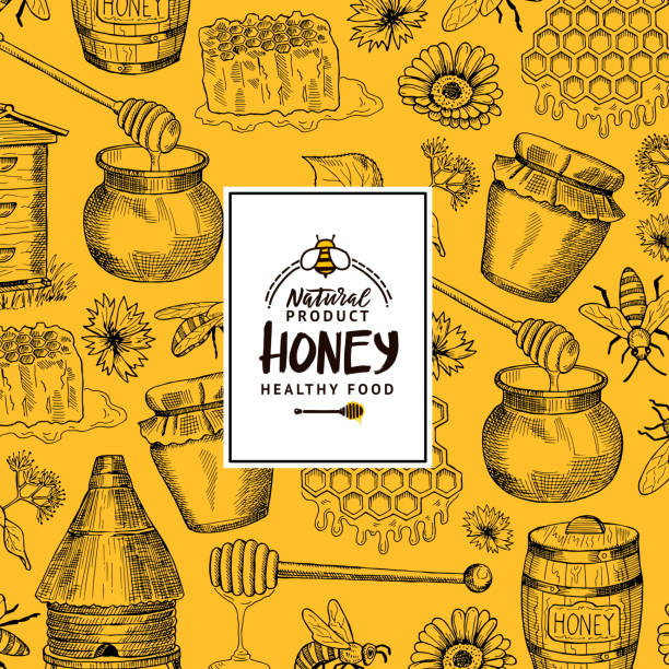 illustrazioni stock, clip art, cartoni animati e icone di tendenza di vector background with sketched contoured honey theme elements with logo or badge for hone shop or farm - miele