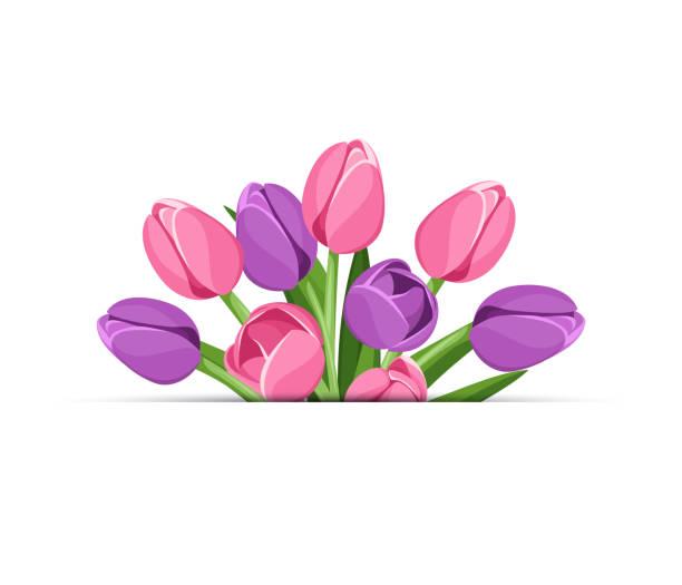 bildbanksillustrationer, clip art samt tecknat material och ikoner med vektorbakgrund med tulpan blommor. - tulpaner