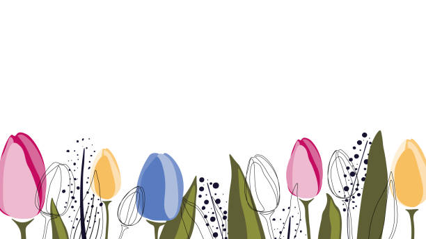 vector background with tulips and leaves - spring stock illustrations