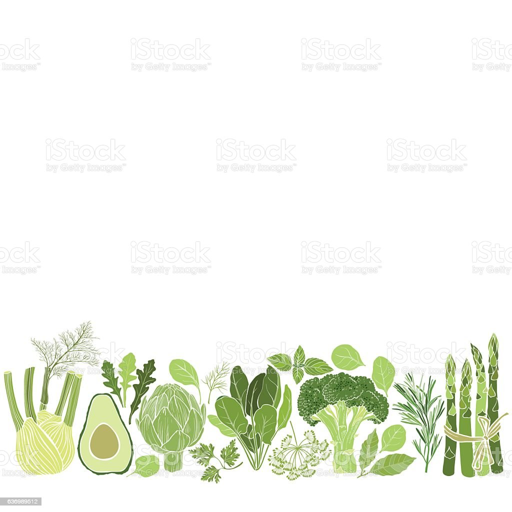Vector background with vegetables, spices and herbs. - Illustration vectorielle