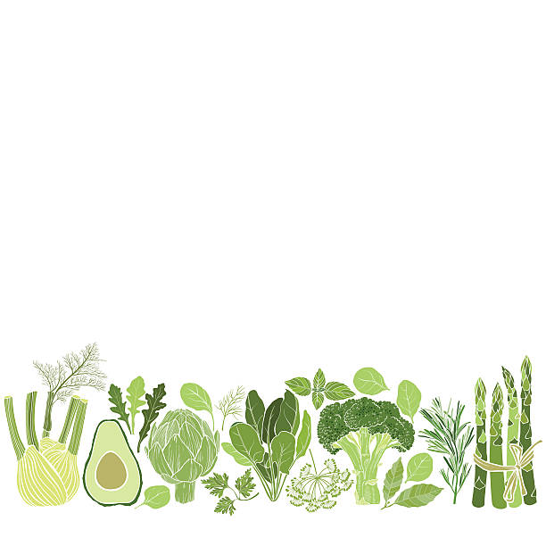 Vector background with vegetables, spices and herbs. Culinary  background with herbs and vegetables. Illustration with place for text,  can be used  creating card, menu or invitation card. avocado silhouettes stock illustrations