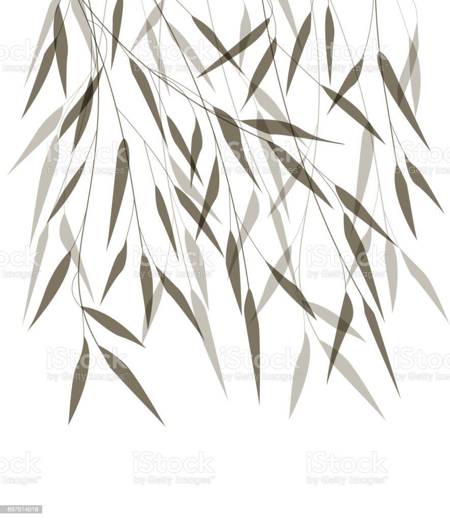 Vecteur Des Feuilles De Bambou Vecteurs Libres De Droits Et