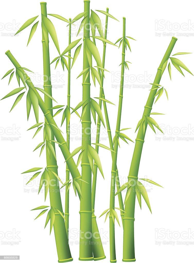 Bambus Stock Vektor Art Und Mehr Bilder Von Abstrakt 93533325 Istock