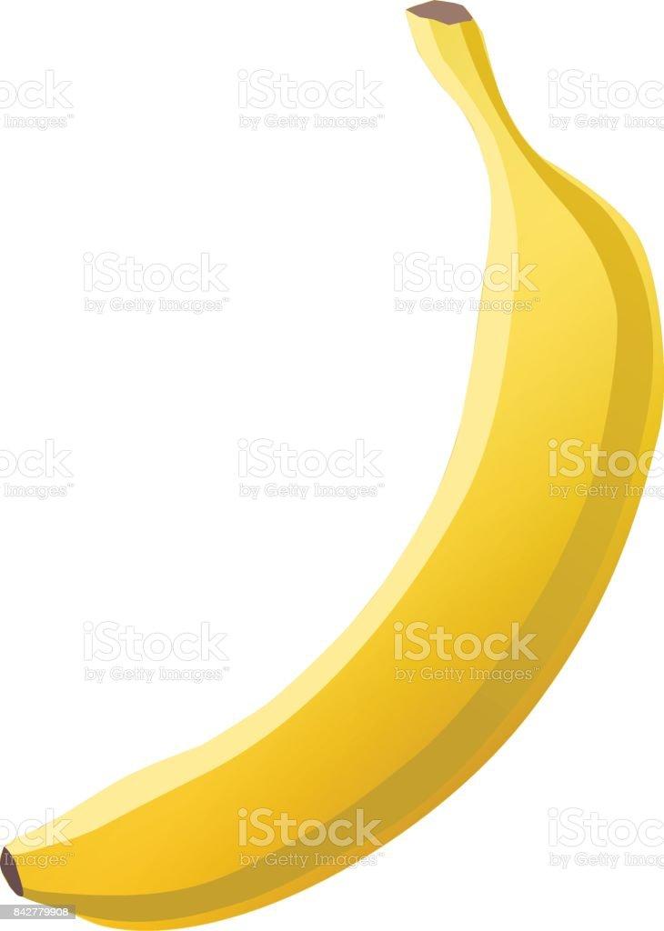 Vector banana vector art illustration