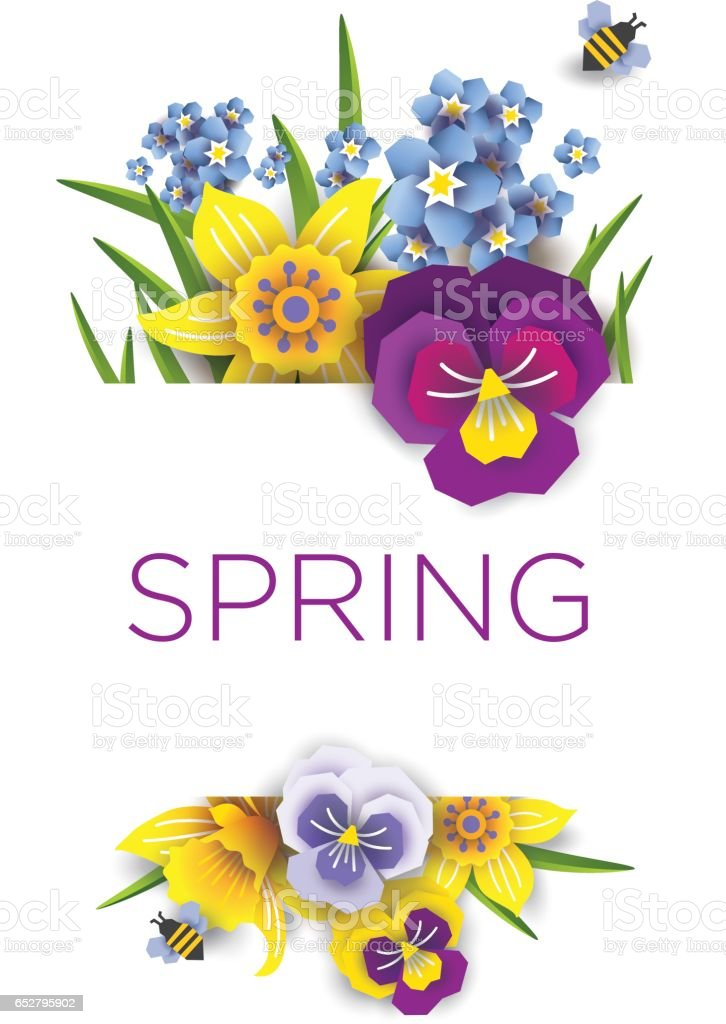 Vector banner of spring flowers. Daffodils and daisies on a white background vector art illustration
