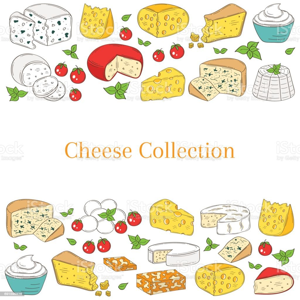 Vector Banner Template With Different Types Of Cheese Hand