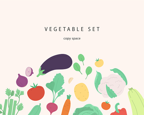 Vector banner with copy space, cute vegetables and herbs.
