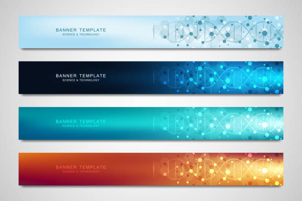 Vector banners and headers for site with DNA strand and molecular structure. Genetic engineering or laboratory research. Abstract geometric texture for medical, science and technology design. Vector banners and headers for site with DNA strand and molecular structure. Genetic engineering or laboratory research. Abstract geometric texture for medical, science and technology design medical illustrations stock illustrations