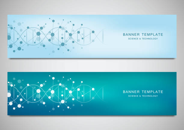 Vector banners and headers for site with DNA strand and molecular structure. Genetic engineering or laboratory research. Abstract geometric texture for medical, science and technology design. vector art illustration